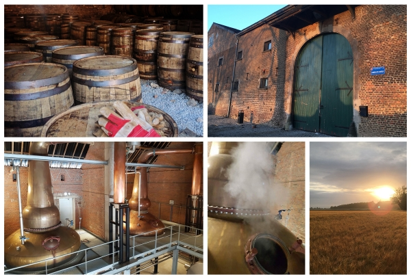 Belgian Owl : un Single Malt Whisky 100 % belge